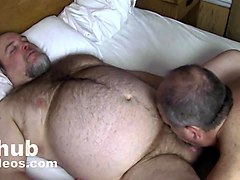 morning bear daddy fuck