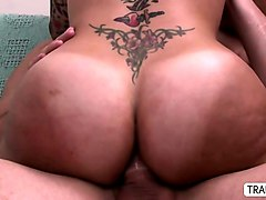busty ts foxxy humps her dick to a guy