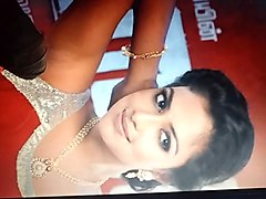 cum tribute to amala paul's armpit
